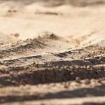 Erholung und Genuss an Palmas Strand